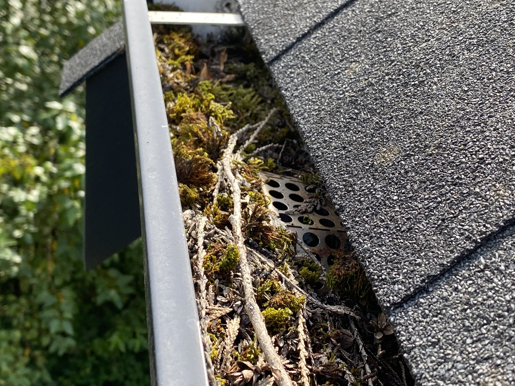 Gutter Cleaning Service By Big Shot Pressure Washing