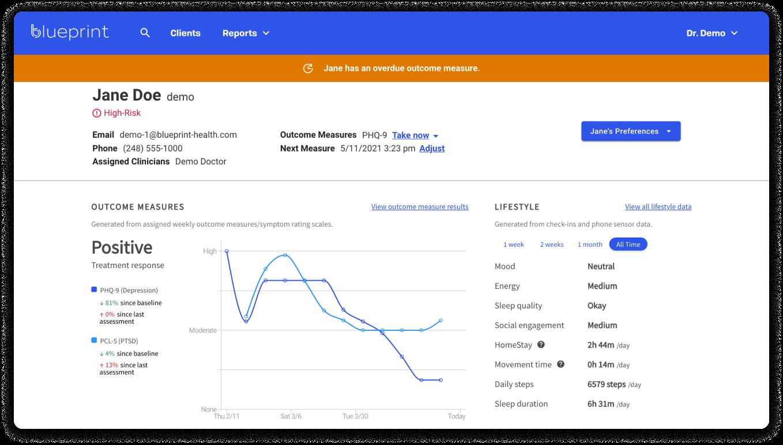 Blueprint clinician portal preview