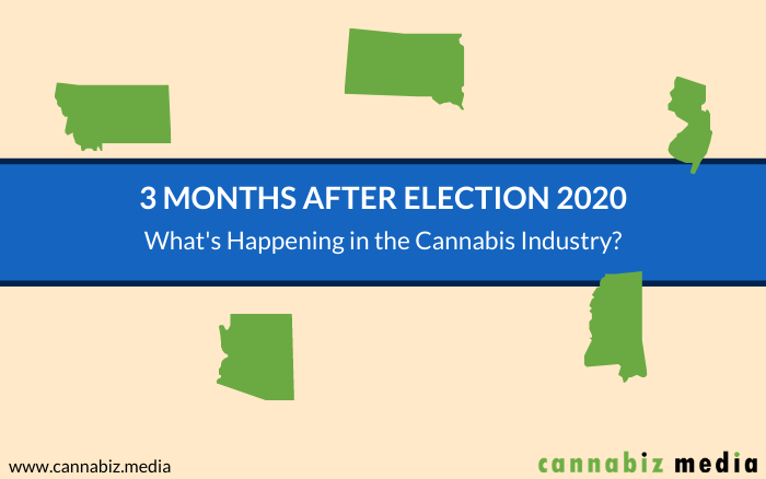 3 Months after Election 2020 – What's Happening in the Cannabis Industry?