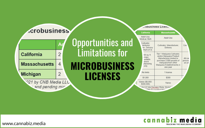 Opportunities and Limitations for Microbusiness Licensing