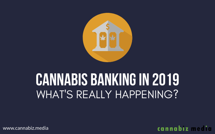 Cannabis Banking in 2019 – What's Really Happening?