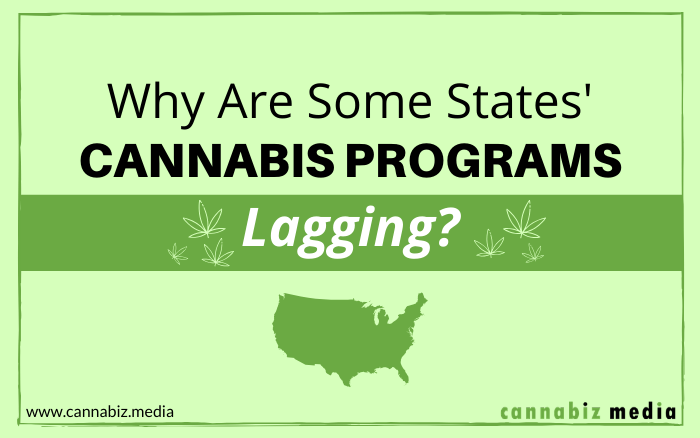 Why are Some States' Cannabis Programs Lagging?