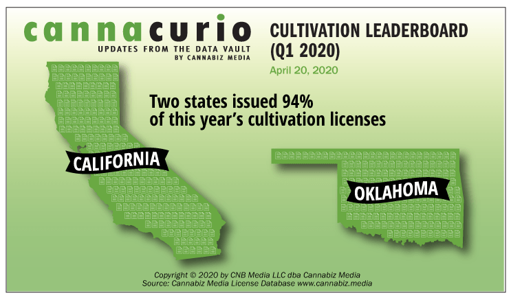 Cannacurio: Cultivation Leaderboard (Q1 2020)