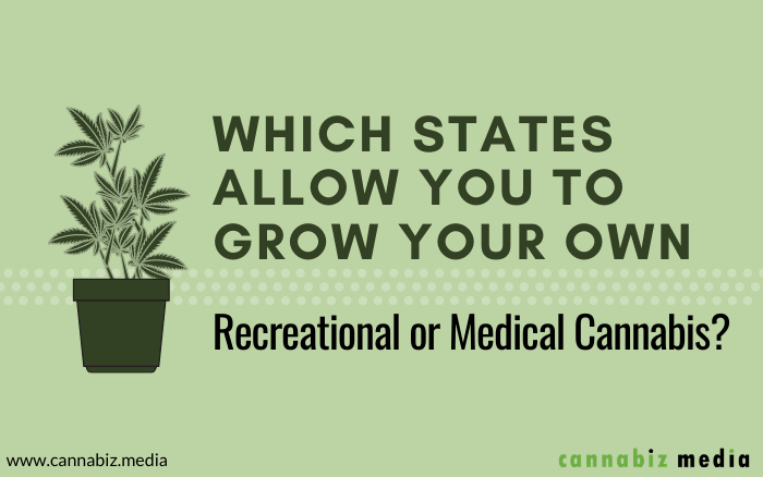 Which States Allow You to Grow Your Own Recreational or Medical Cannabis?