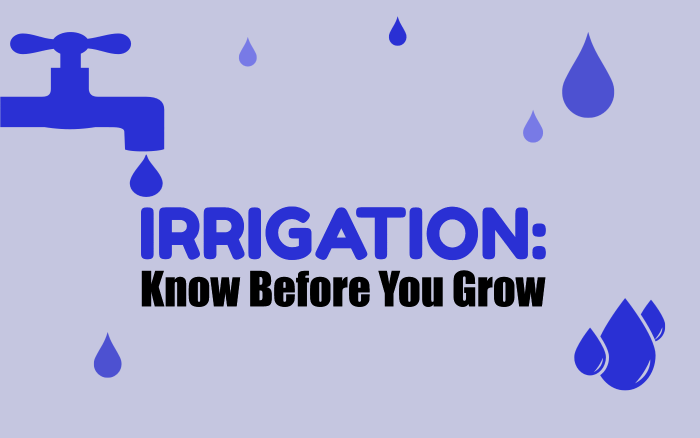 Irrigation: Know Before You Grow