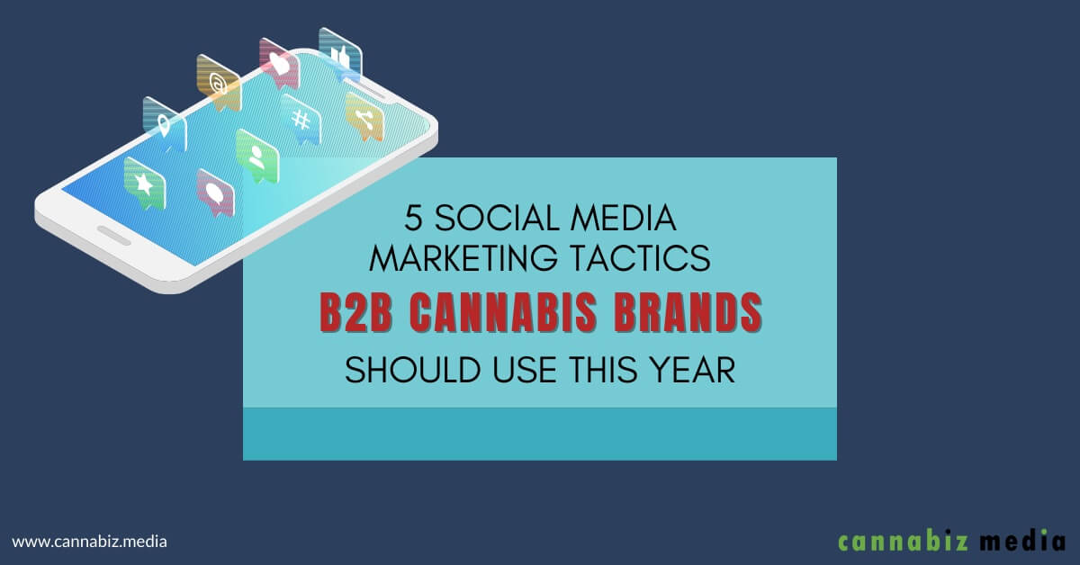5 Social Media Marketing Tactics B2B Cannabis Brands Should Use This Year