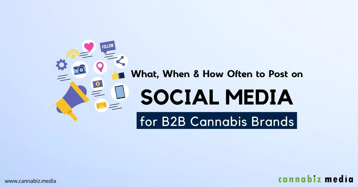 What, When and How Often to Post on Social Media for B2B Cannabis Brands