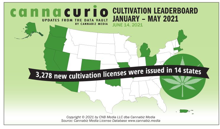 Cannacurio #44: Cultivation License Leaderboard January – May 2021