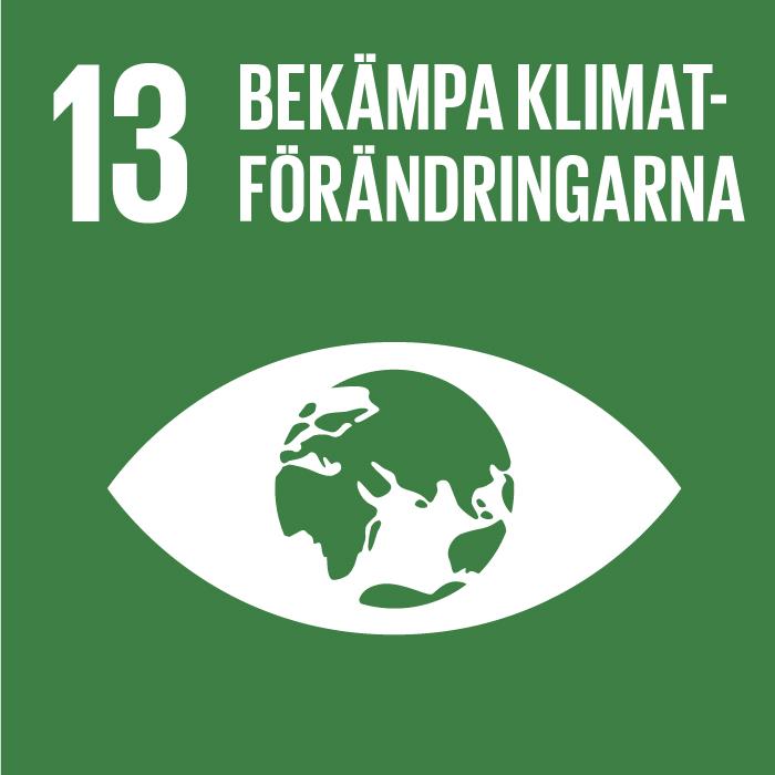 Ikon för globala målen nummer 13, Bekämpa klimatförändringarna