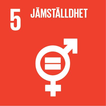 Ikon för globala målen nummer 5, Jämställdhet