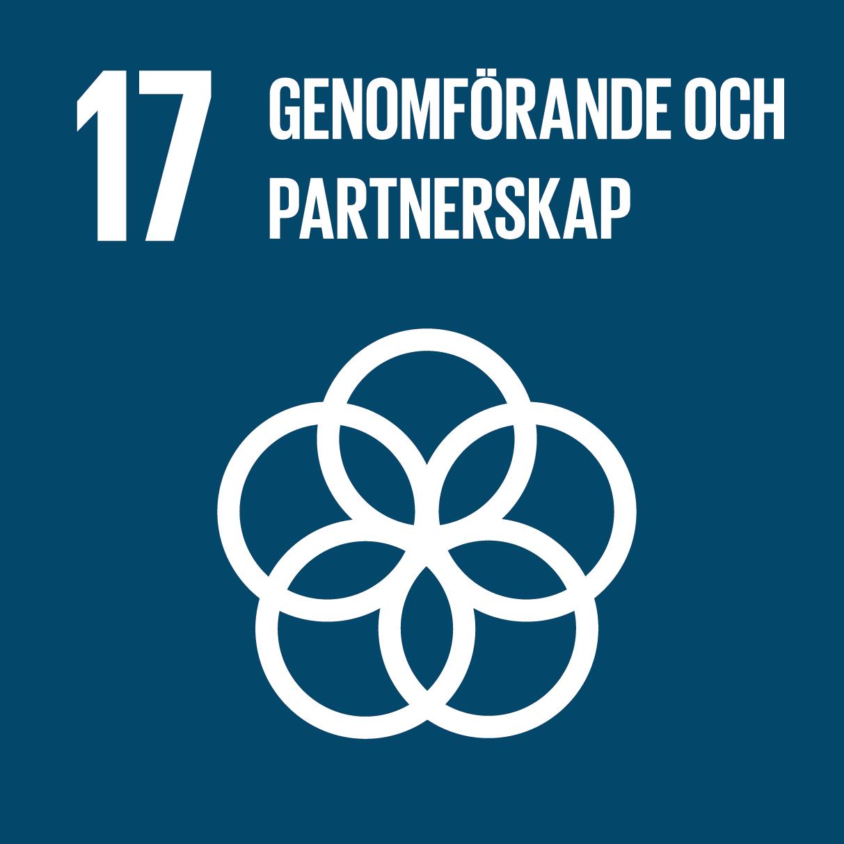 Ikon för globala målen nummer 17, Genomförande och partnerskap
