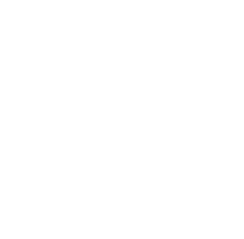 Racial Profiling Prohibition Project, CTRP3, Logo