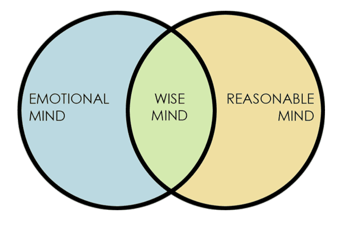 The Wise Mind, Emotional Mind and Reasonable Mind