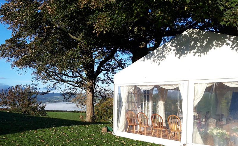 Marquee Under Tree