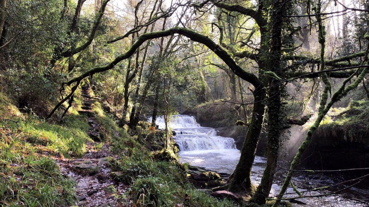 Clare Glens Walking Loop