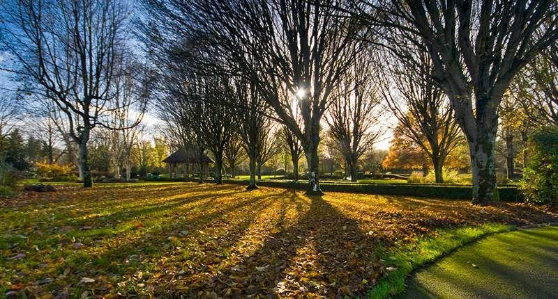 Adare Village Park