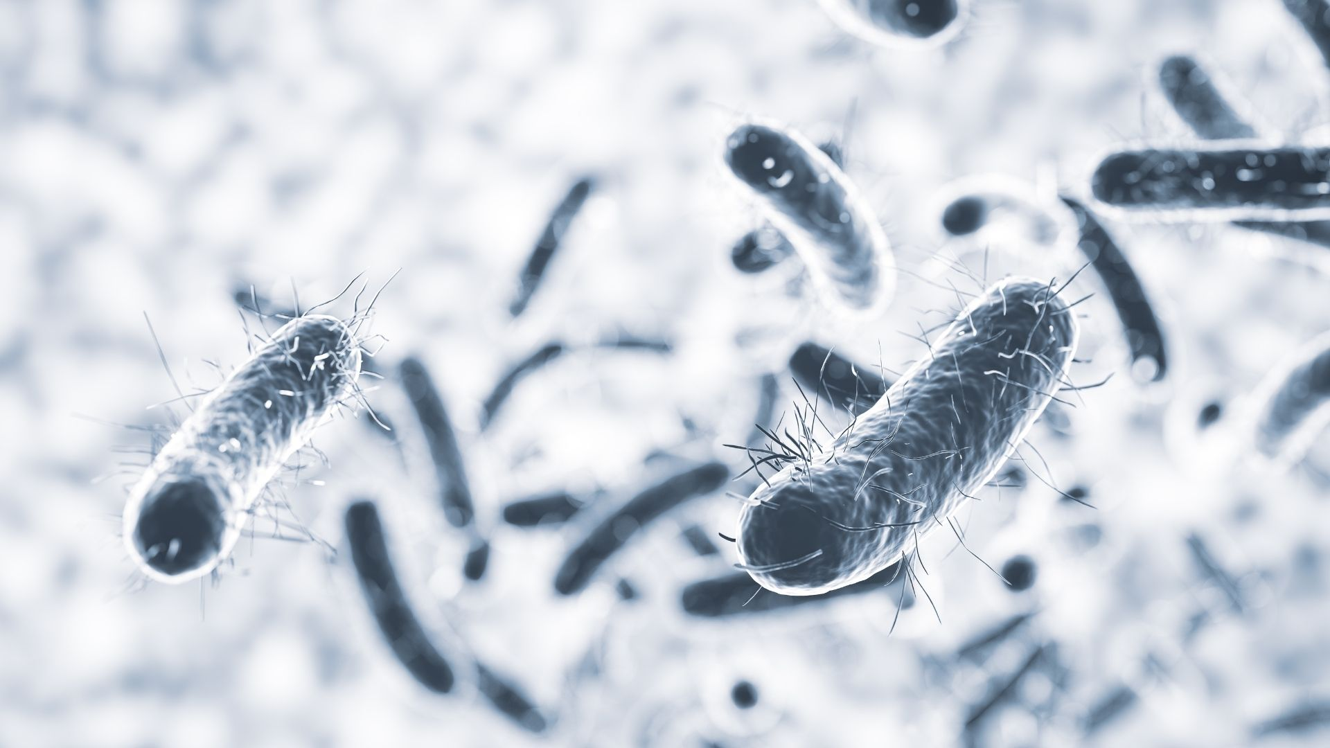Bacteria Removal | ASIET Air Purifiers