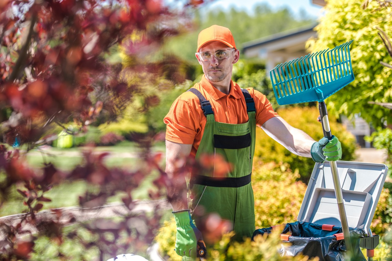 Professional with hand rake