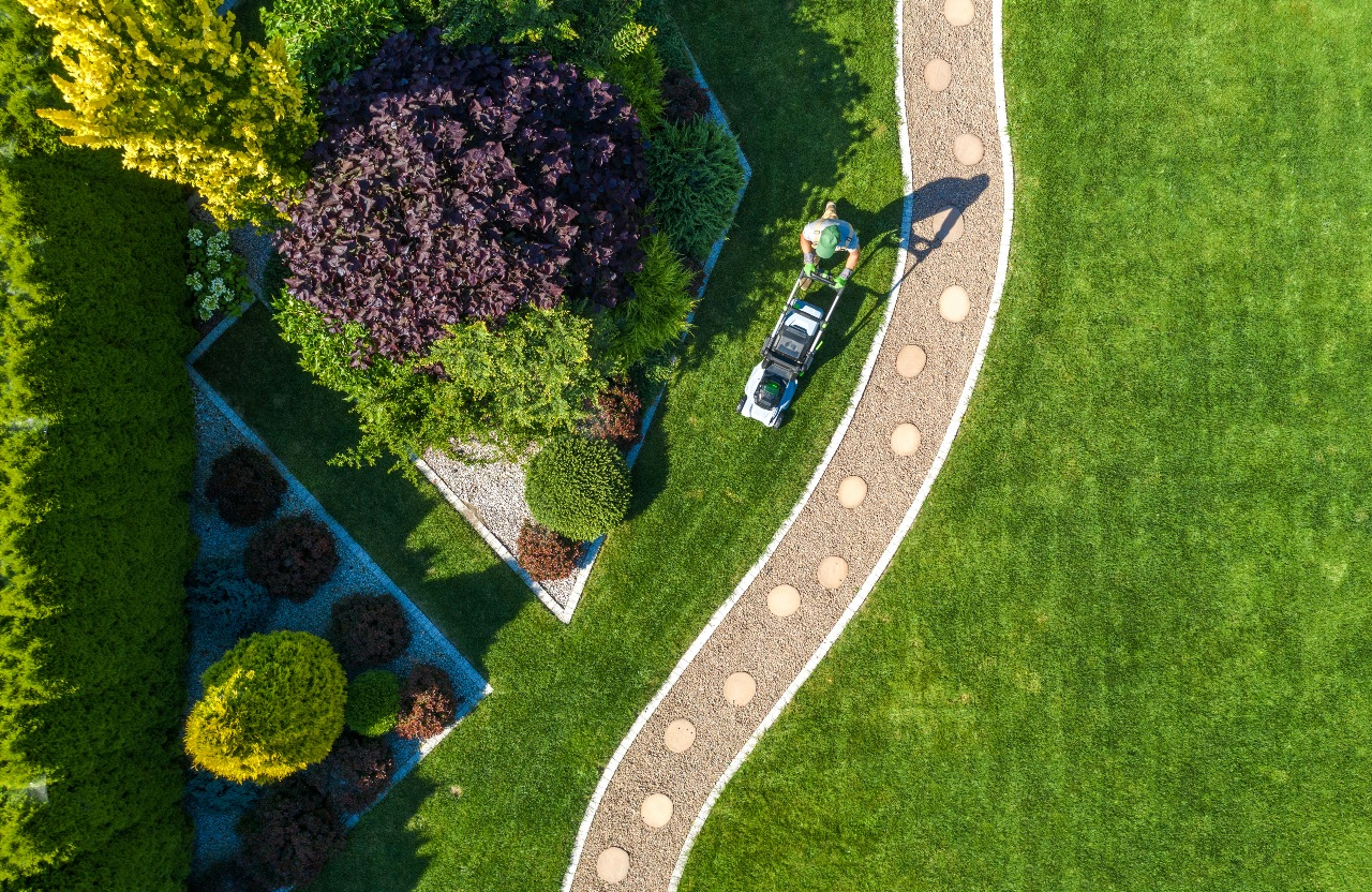 Large backyard with trees, shrubs and walkway surrounded by lush green grass that has been freshly mowed