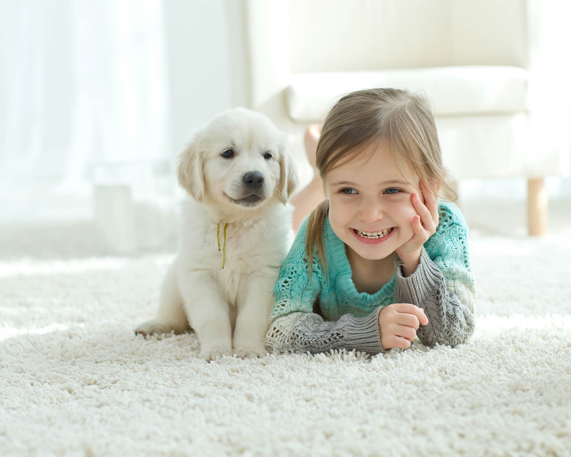 Happy child with puppy on clean carpets