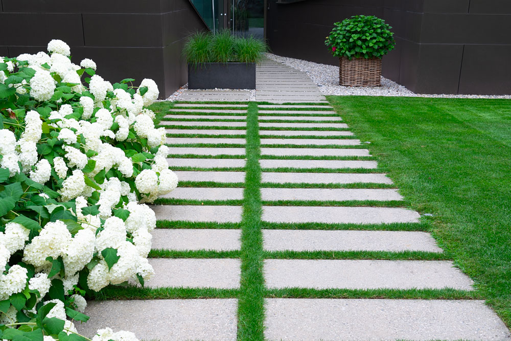 A perfectly cut grass and flower arrangement.