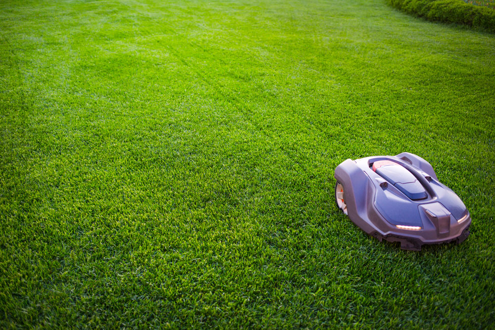 An automatic mower that keeps the lawn in excellent condition.