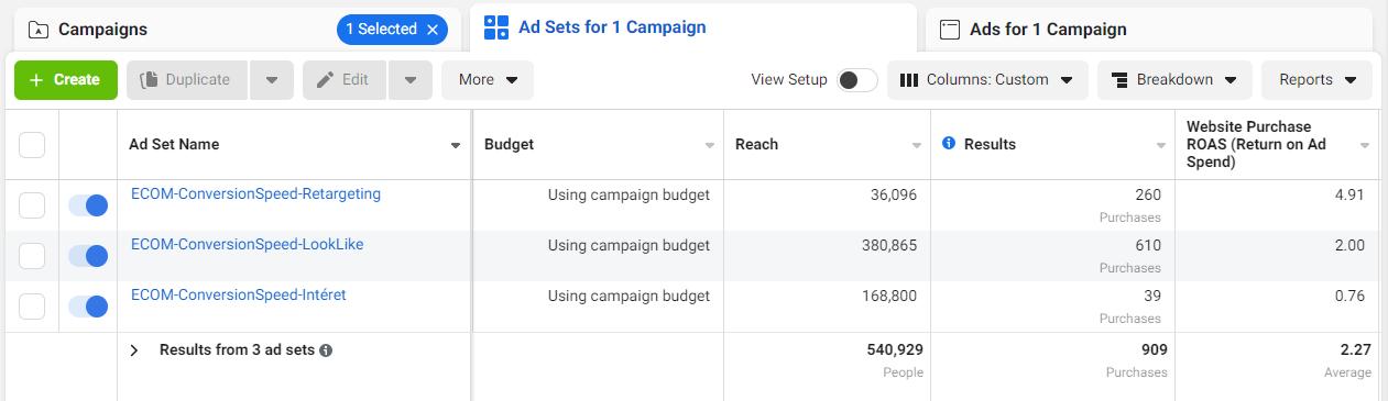 Screenshot campagnes Facebook ads des Mini Mondes
