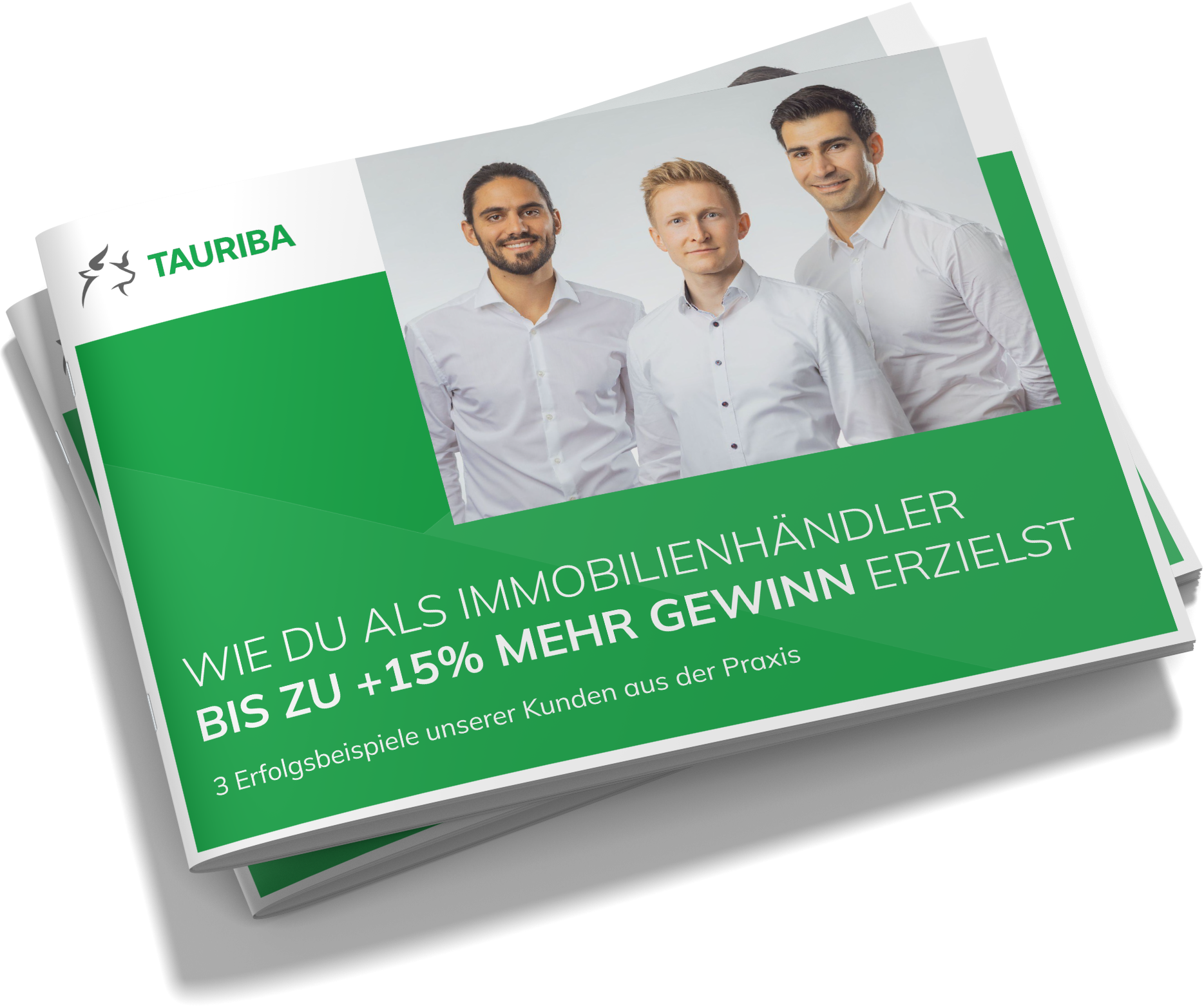 TAURIBA Whitepaper