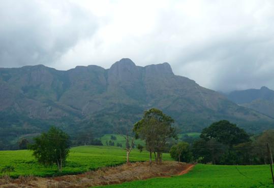 GAIA Villages Impact Report: Traditional Authority Mabuka, Mulanje District, Southern Malawi