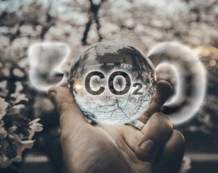 What Is a Carbon Offset and Why Do Companies Need It to Achieve Net Zero Carbon Emissions?