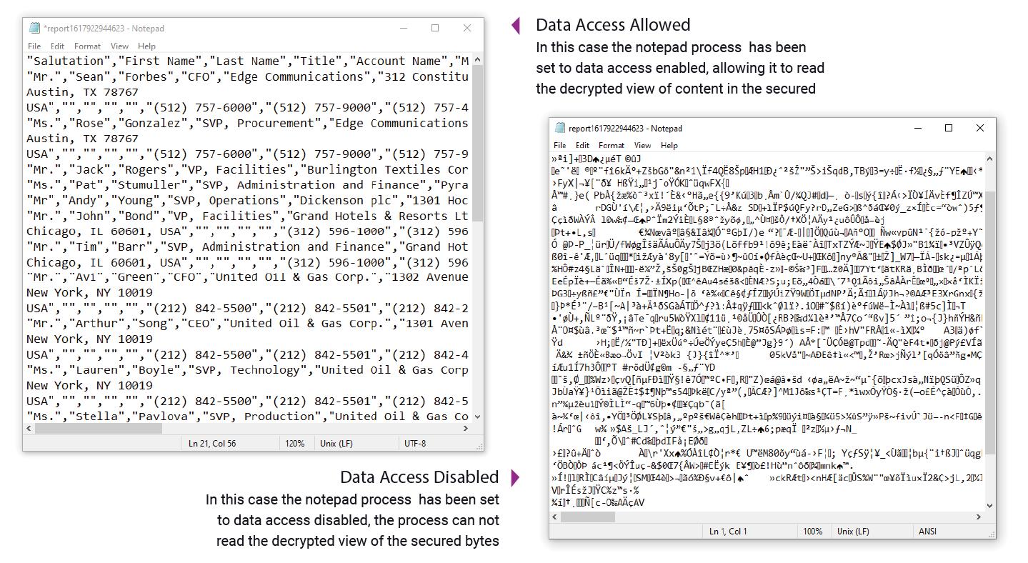 Proteção de nível de processo para dados de arquivo