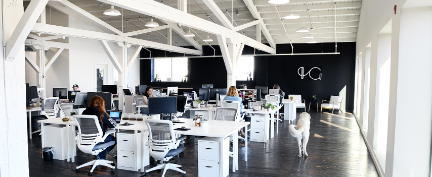 The Helen & Gertrude office space; a large open industrial space with white desks and white file cabinets. The H&G logo as a neon sign is on a black wall in the back. A large white dog walks by a wall of windows.