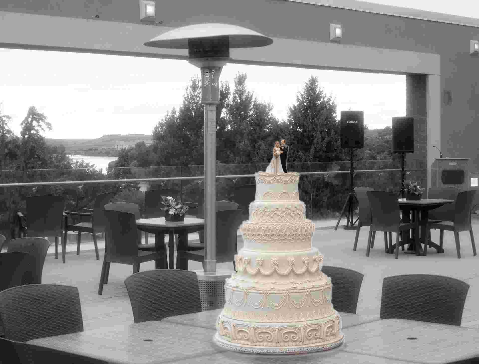 Rental Space Wedding Cake