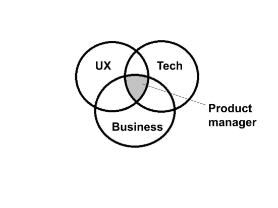 Role of a product manager in today's world