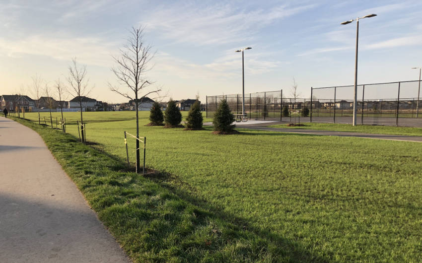walkway beside grassy area in diamond jubiliee park in ottawa, with fenced sports area and houses in background