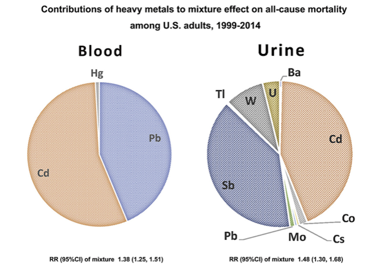 Levels of heavy metals in blood and urine and increased mortality