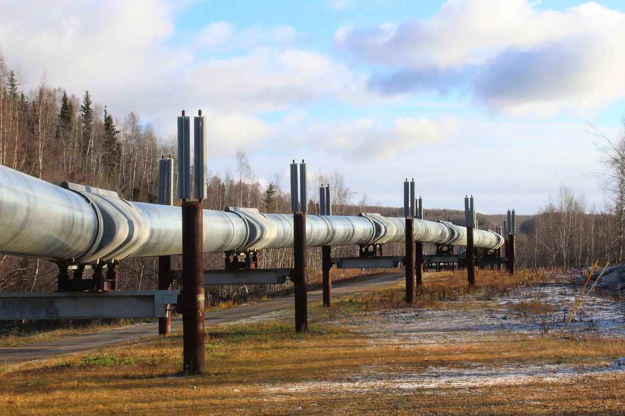 China accessed many pipeline companies in past few years: US report