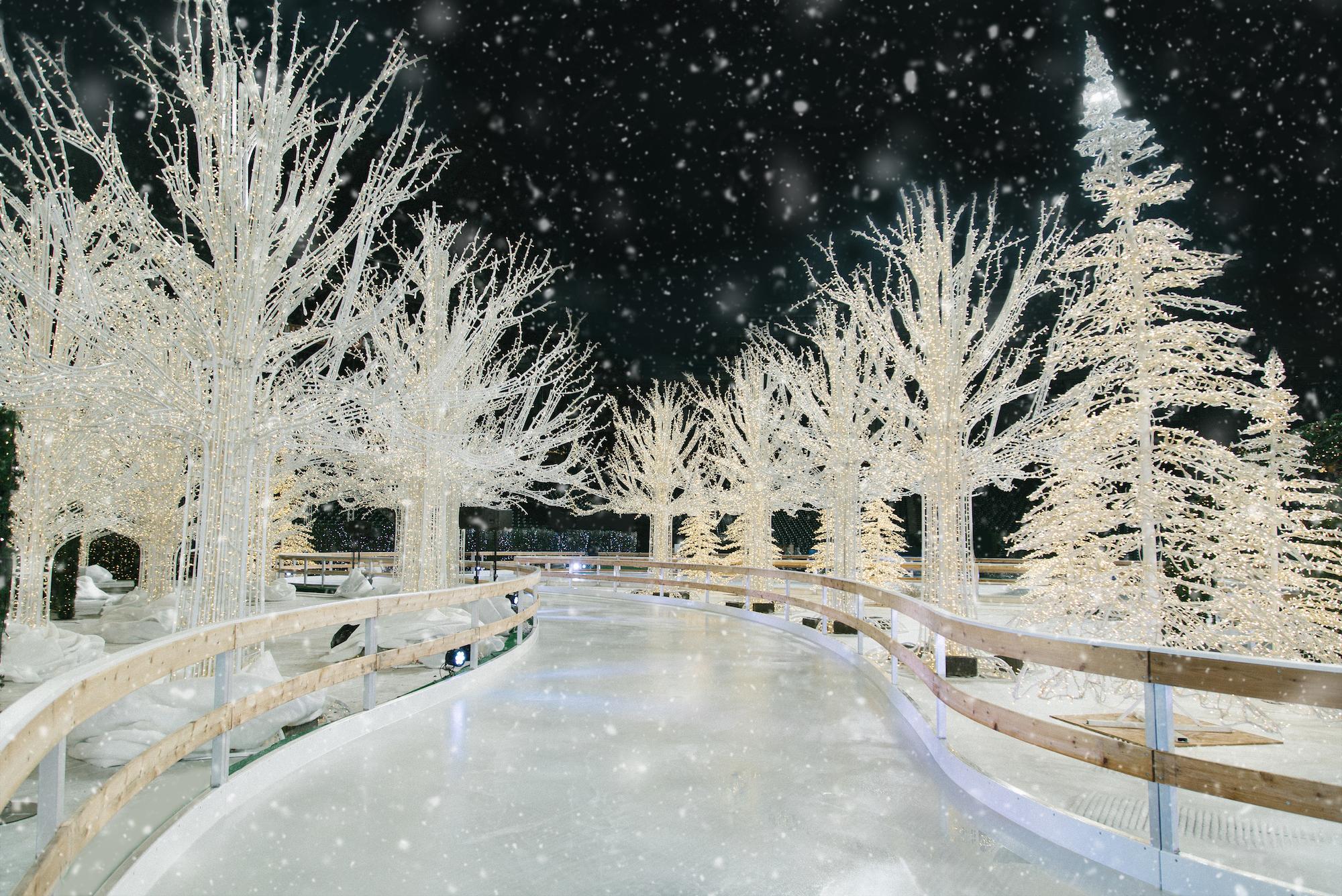 Enchant Ice Rink