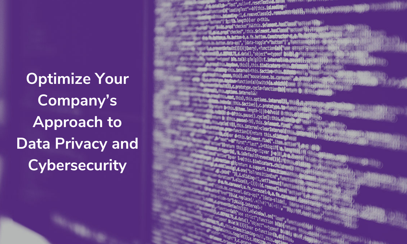 Optimize Your Company's Approach to Data Privacy and Cybersecurity