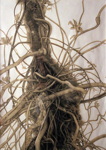 """Patrons' Award for Drawing, Pastels or Print: Csilla Sadloch of Yardley, PA """"Poison Ivy"""" Graphite"""