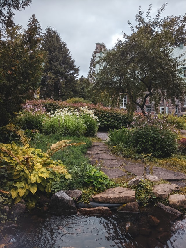 Gardens of eden designed and installed this gorgeous garden in Vermont. Ferns and plants surround a home with a rock slab path leading to a home.