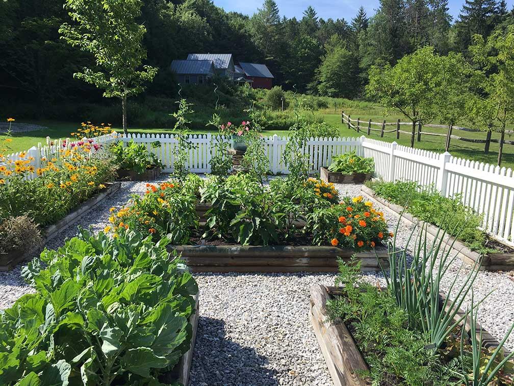 vegetable garden card link photo