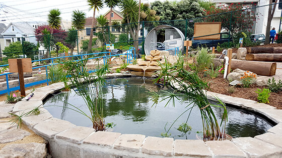 pond feature, water feature