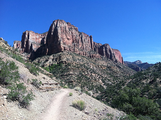 Typical Trail, About Mile 10