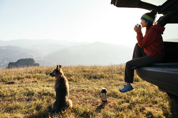 A young woman in a car on a background of mountains sits relaxed and drinks hot tea. A young woman in a car on a background of mountains sits relaxed and drinks hot tea. A faithful and beloved dog sits nearby.