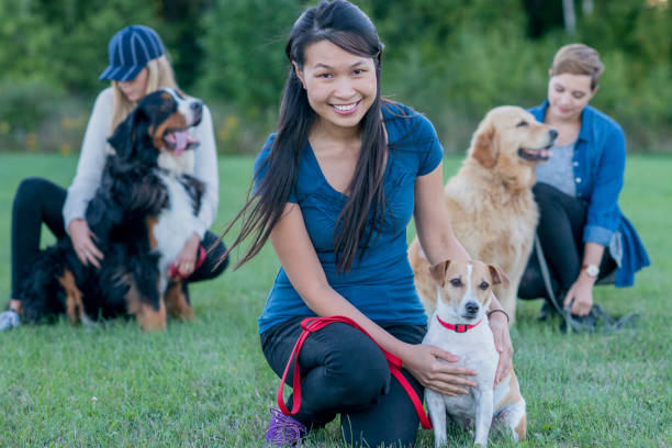 Women With Dogs Three dogs are outdoors in a field with their female owners. The dog are sitting and the women are kneeling to touch the dogs. They all look happy. dog training stock pictures, royalty-free photos & images