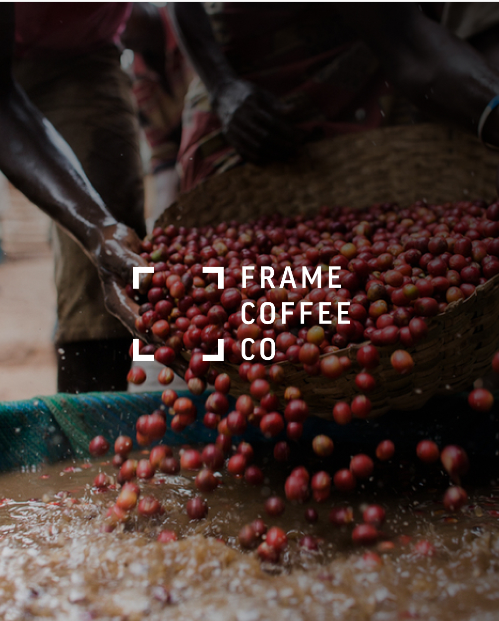 """An image of Frame Coffee Co's bright, modern brand that challenges the consumer to """"picture coffee differently"""""""