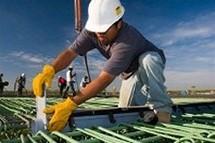 Dulles Plumbing Group Website Image
