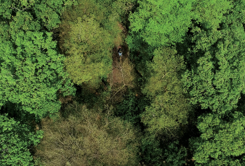 新業建設 | 獨藏。永恆之馥 - 東光綠園道實景圖