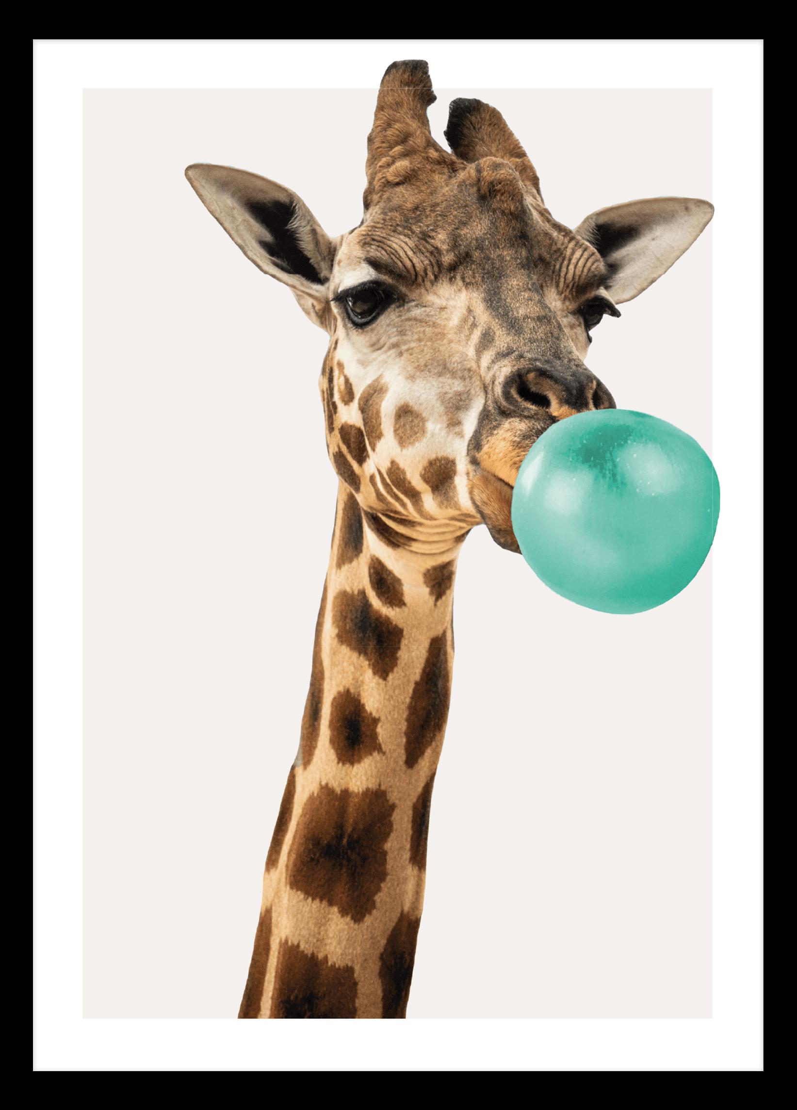 Bubblegum Giraffe